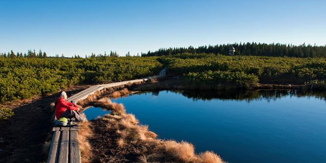 1 - Lovrenška jezera