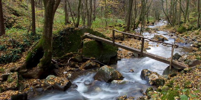 1 - Bistriški Vintgar Gorge