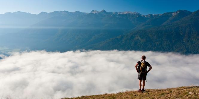 1 - Vogar alpine meadow