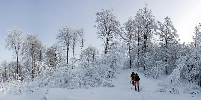 5 - Snežnik (from Sviščaki)