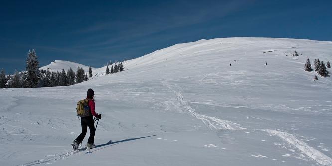 2 - Velika planina (iz prelaza Volovljek)