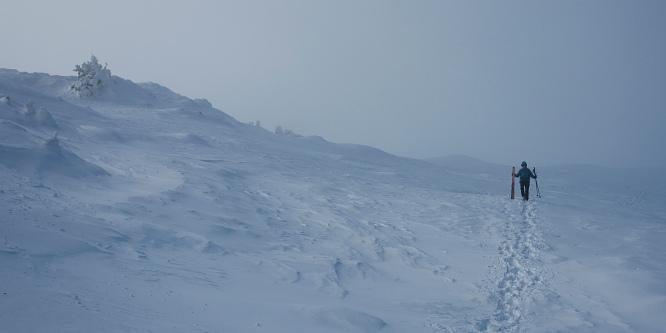 5 - Velika planina (iz prelaza Volovljek)