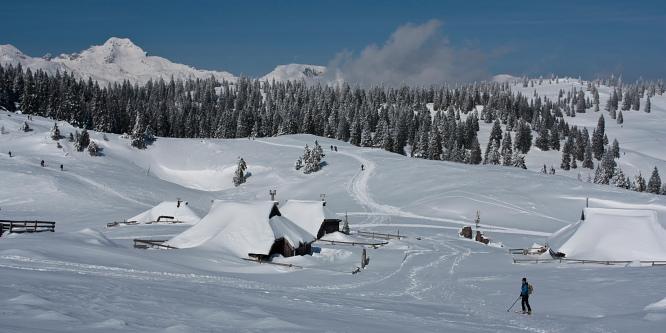 3 - Velika planina (iz prelaza Volovljek)