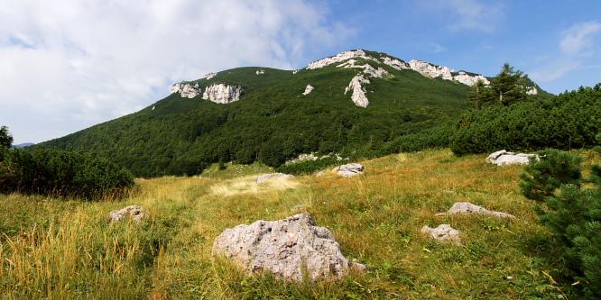 5 - Snežnik (iz Gašperjevega hriba)