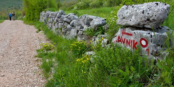 5 - Slavnik (iz vasi Skadanščina)