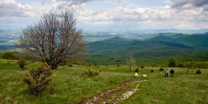 4 - Slavnik (iz vasi Skadanščina)