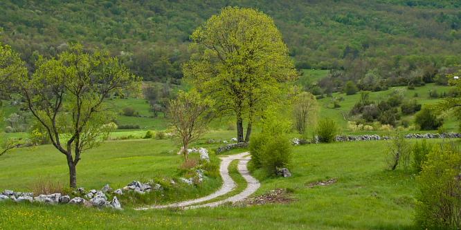 3 - Slavnik (iz vasi Skadanščina)