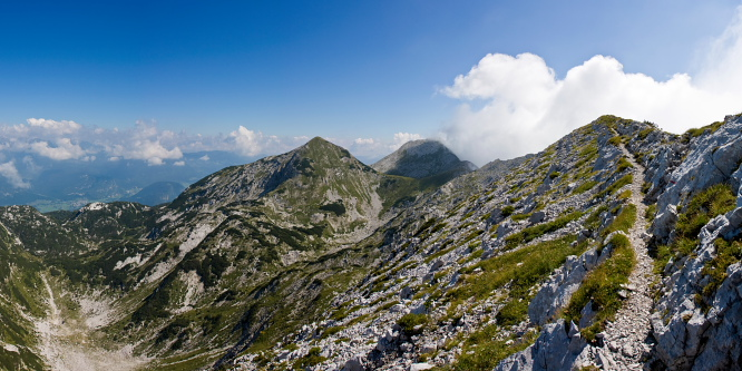 2 - Rodica (in planina Poljana)