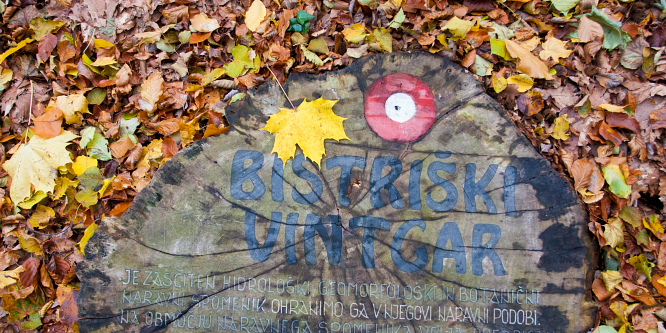 4 - Bistriški Vintgar Gorge