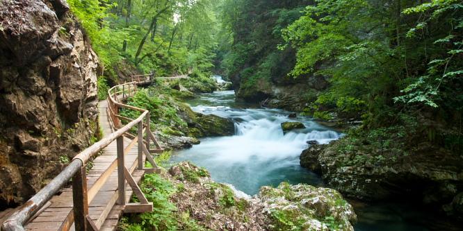 1 - Vintgar Gorge Bled