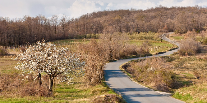 5 - Through traditional Istrian villages