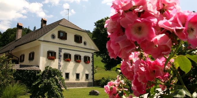 3 - Apartmaji Cvetje v jeseni