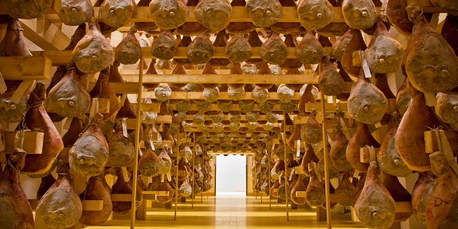 5 - Lokev na Krasu - vojaški muzej in pršut