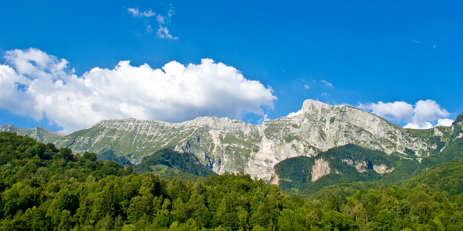 2 - Alpine meadows beneath Mt. Krn