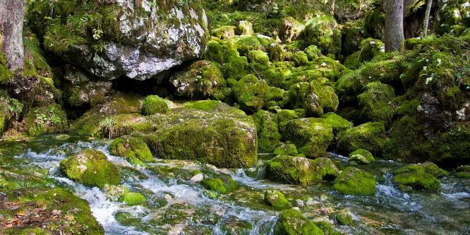 3 - The Valley of Kamniška Bistrica