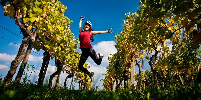 2 - Ljutomer and Jeruzalem - Through the endless vineyards