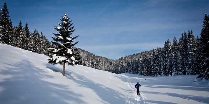 1 - Pokljuške planine - Uskovnica in Zajamniki