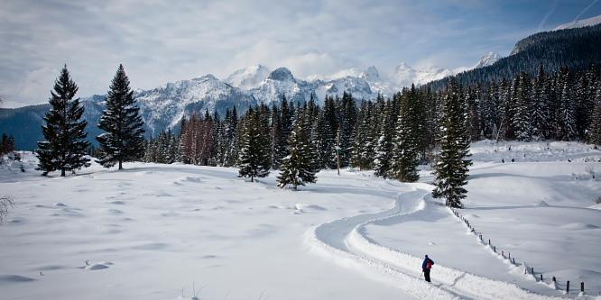 3 - Pokljuške planine - Uskovnica in Zajamniki