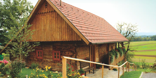 1 - Country House Bahor