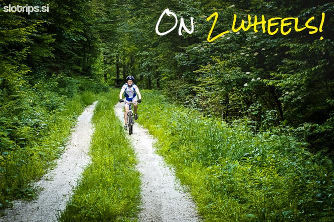 mountain bike day tour bled slovenia
