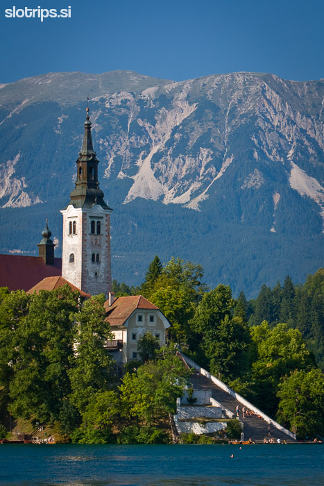 slovenia bled mountain bike day tour