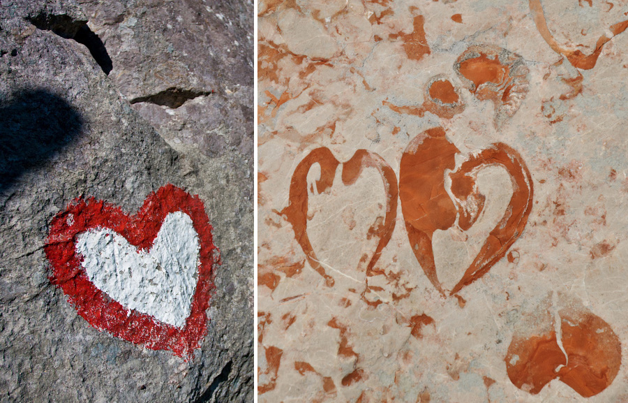 fossils love slovenia
