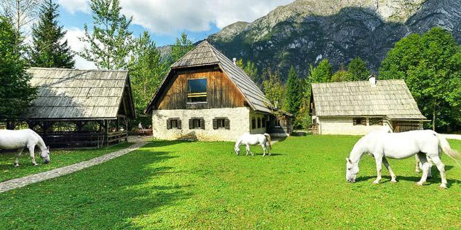 6 - Pristava Lepena, dolina Soče