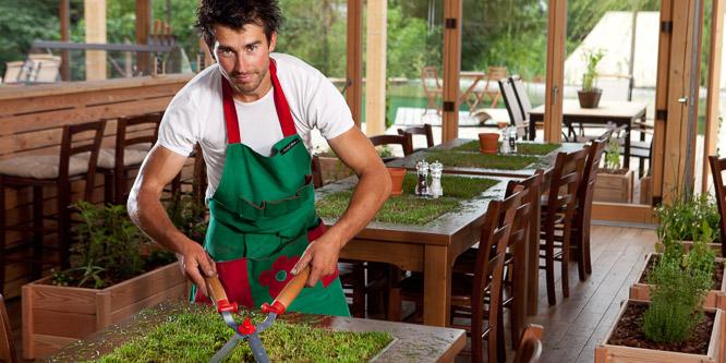 5 - Greenhouse, Garden Village Bled