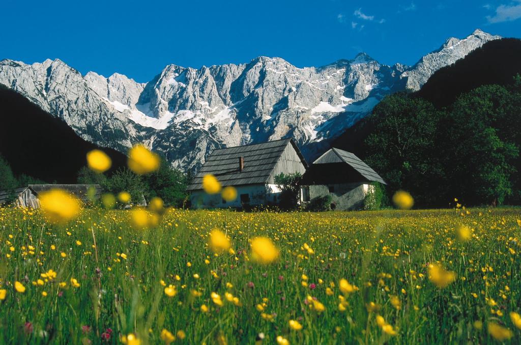 alpine farmstay jezersko slovenia