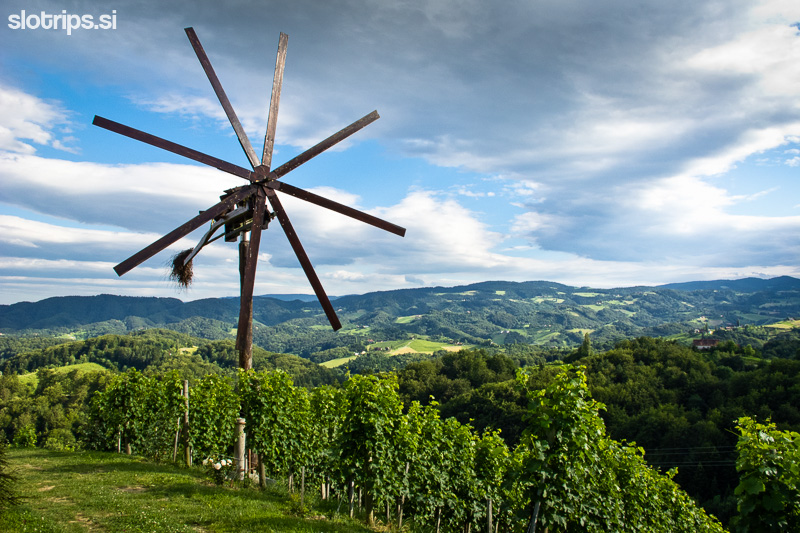 slovenia wine region maribor cycling