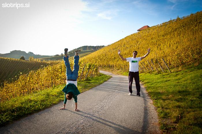 slovenija svečina maribor vinska cesta