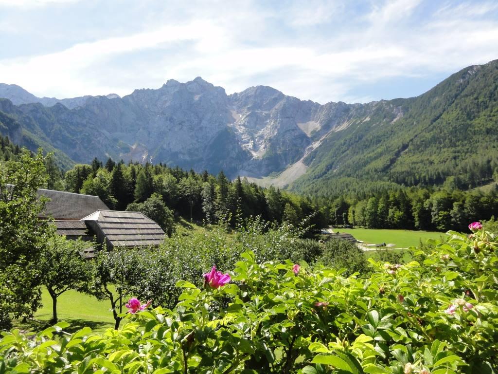 makek alpine farmstay jezersko slovenia