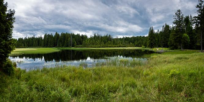 6 - Rogla - Slap Šumik - Črno jezero