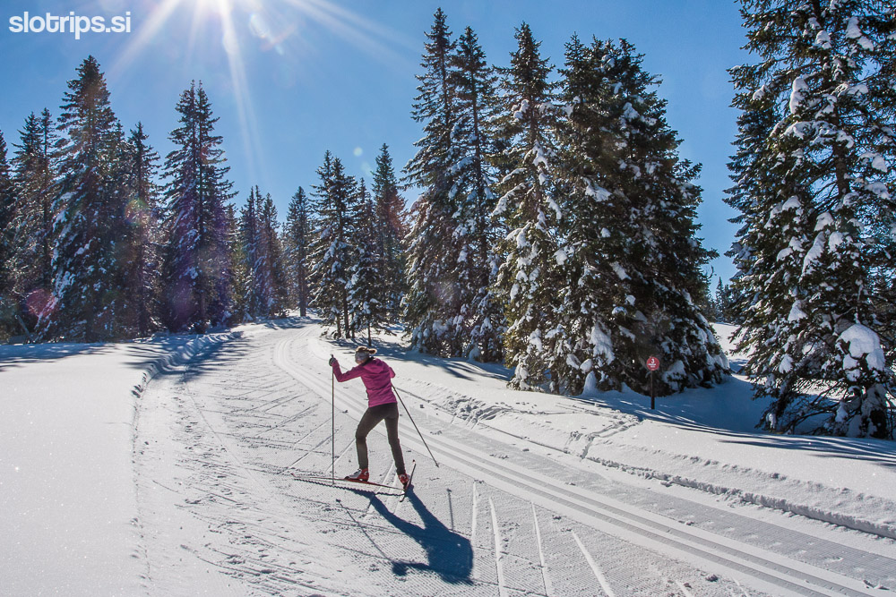 rogla winter slovenia cross country skiing