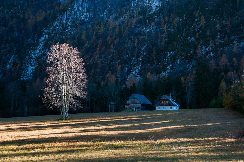 alpine cottage radovna triglav national park slovenia