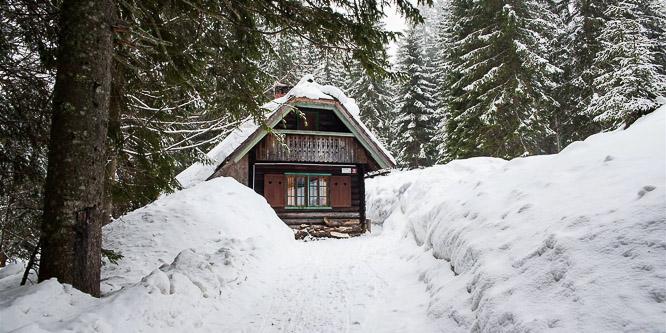 1 - Alpine chalet Goreljek, Pokljuka