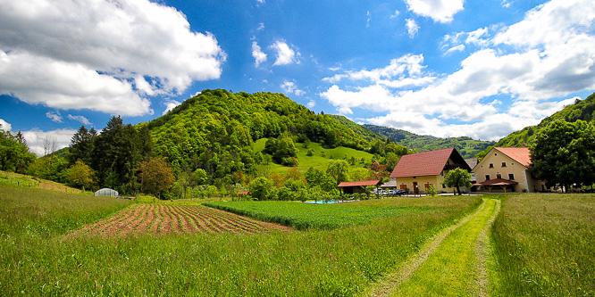 4 - Tourist farm Želinc, Cerkno