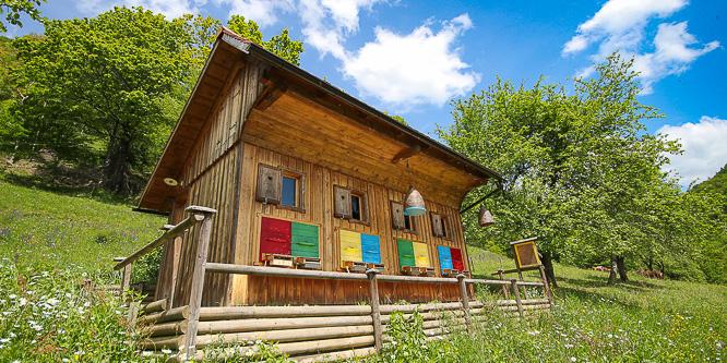 5 - Tourist farm Želinc, Cerkno