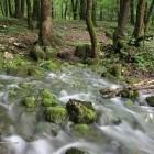 12-Karst springs in the valley