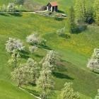 9-Solitary farms