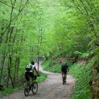 8-Ascent towards Govejek