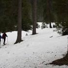 1-Začetek po gozdu proti planini Lipanca