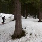 4-Začetek po gozdu proti planini Lipanca