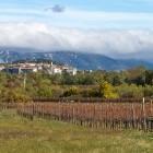 7-Jesenskih vinogradi in Štanjel