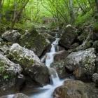 5-Lepo naravno okolje