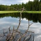 13-Črno jezero