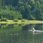 4-Lake Cerknica in spring time