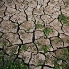 15-Dry soil