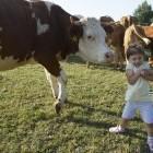 20-Živali na kmetiji