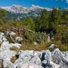 11-Razgled iz vrha Pršivca